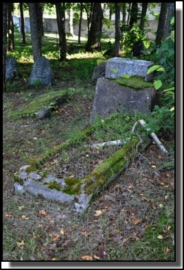 The Jewish cemetery of Dagda. September 2009