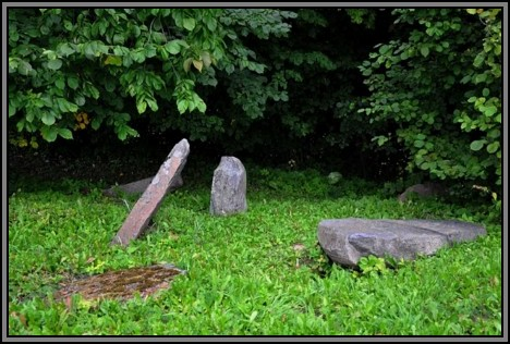The Jewish cemetery of Kelme. August 2009
